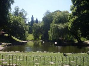SDC126051 300x225 Parks in Lemberg